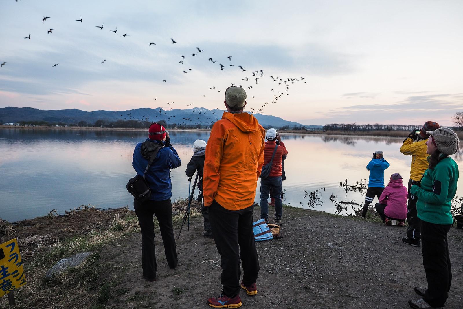 2017 Golden Week Goose Hunt Cycle Tour Day 3 Tsukigata To