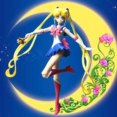 #shfsailormooncrystal #sailormoon #sailorscouts #magicalgirls #usagitsukino #tamashiinations