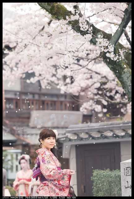 Photo:桜の香り By:lincet