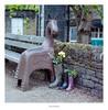 Horse & Wellies