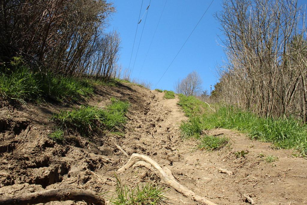 Short Hills 04