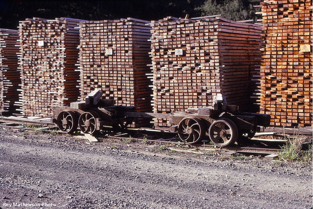 Ray Te Whetu log bogies near drying timber stacks.