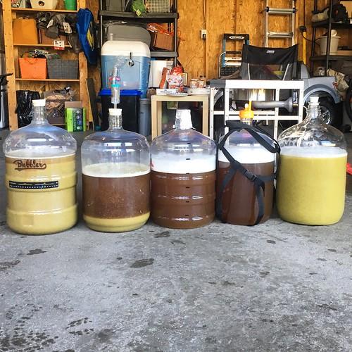 21 gallons splits 5 ways nicely. #homebrewing #BIAB #bigbrew