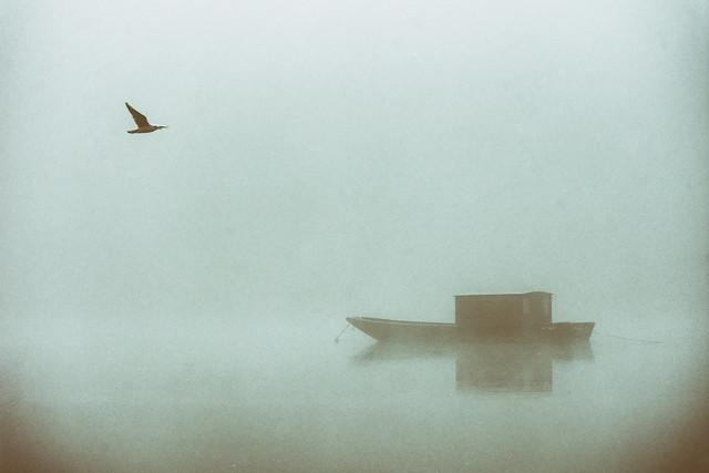 La Loire, Rochecorbon, France 2017, Nikon D7200, Sigma 70-300mm F4-5.6 DG OS