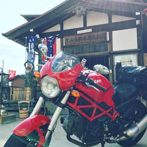 先日取材にきた津島駅そばの観音寺さんへ御参りにきました #japanese #temple #ducati #ducatimonster