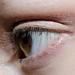 _DSC0314 by mash_visage
