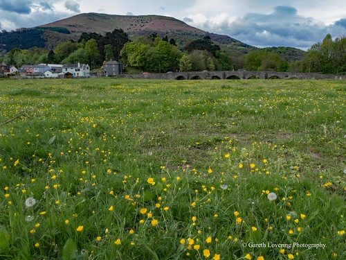 Llanfoist bridge Abergavenny 2017 04 27 #14 (Gareth Lovering Photography 3,000,594 views.)