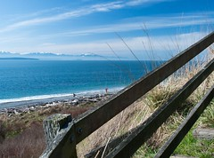 Ebey's Landing with the Olympic Mountains in the distance
