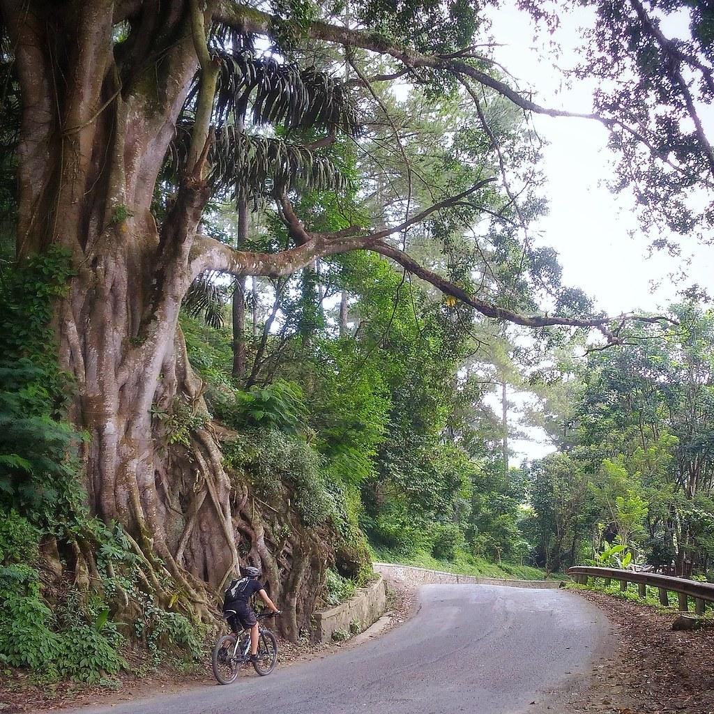 Climbing Maribaya