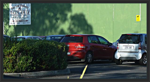 The Green Wall, Sony DSC-HX50V