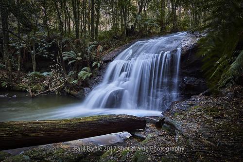 Bush Creek Waterfall - NSW