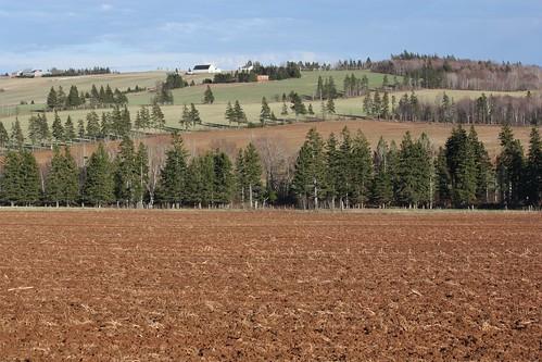 springfield pei canada hills hilly fields farm trees