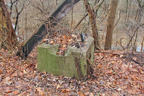 Remnant of the Erie