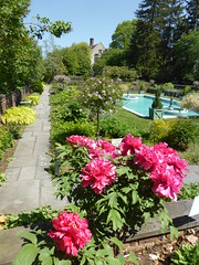 Planting Fields Arboretum - Oyster Bay (33)