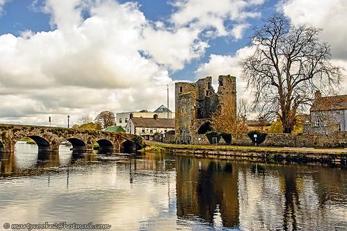 The Black Castle (Leighlinbrige, County Carlow, Ireland)