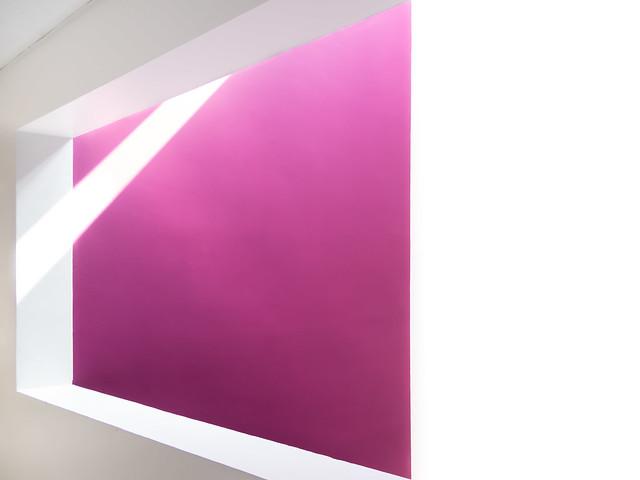 deep purple [explored], Olympus E-M10MarkII, Tamron 14-150mm F3.5-5.8 Di III