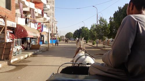 Carriage ride through Edfu