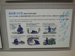 jap 2013 iga-ueno 054