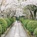 京都 Kyoto by 2C Photo