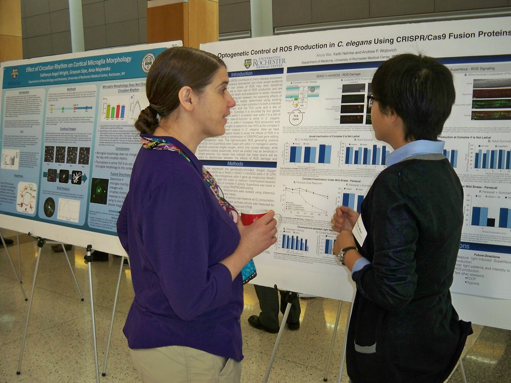 Alicia Wei with poster session guest