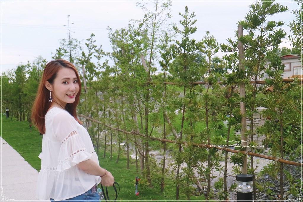 美吾髮葵花亮澤染髮霜自然紅棕 (12)