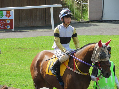 釜山慶南競馬場の騎手