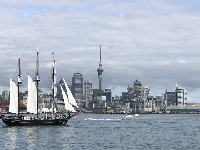 Sailing by Auckland's Skyline