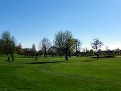 GOC Harrow Weald–Bushey 080: Grims Dyke Golf Club