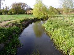 River Colne, St Stephen