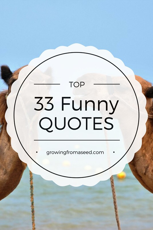 top33 quotes