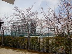 jap 2013 iga-ueno 005