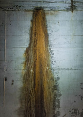 Rust looks like a horse's tail