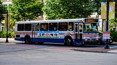 WMATA Metrobus 2000 Orion V #2113