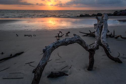 beach nikon morrisisland nikon7200 sunrise atlanticocean follybeach driftwood nikon1755mm rocks