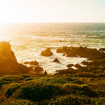 Cue The Sun | Big Sur