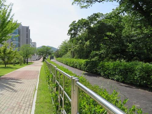釜山慶南競馬場の馬道