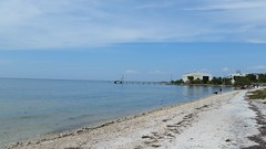 All Along the Shoreline