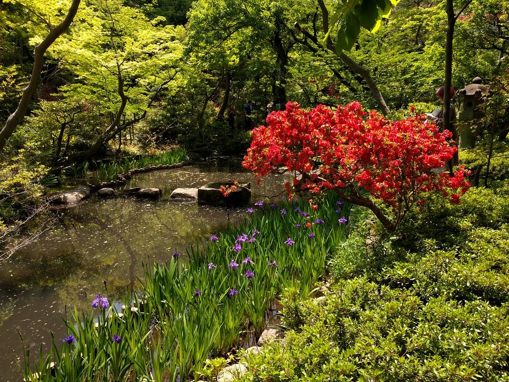 Garden, Nezu Art Museum-Garden