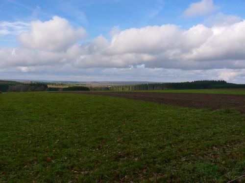 La plaine Buffle à Bourseigne-Neuve
