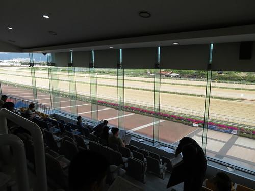 釜山慶南競馬場の2階からの眺め