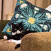 Small photo of Molly's favourite cushion