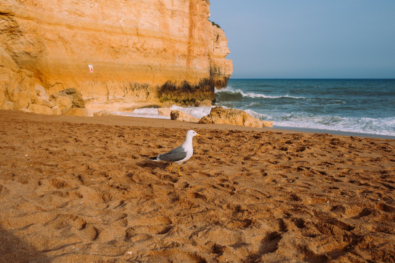 Praia de Benagil - a legtöbbet reklámozott portugál strand