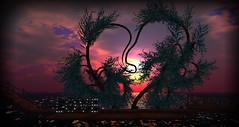 commune love