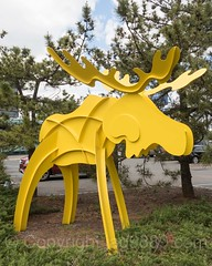 Yellow Reindeer Sculpture, The Corporate Park of Staten Island, Bloomfield, New York City