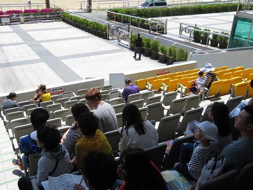 釜山慶南競馬場の屋外スタンド