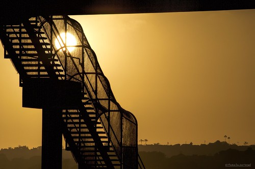 stairwayto danapoint darkness theoc stairway fence hillside hill silhouette silhouettes sunset socal southerncalifornia sun sunglare orangecounty oc outdoor walkway california ca goldenstate golden goldenhour glow evening eveninglight eveningskies palmtrees chainlinkfence