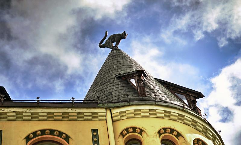 13. Riga Casa del gatto 2