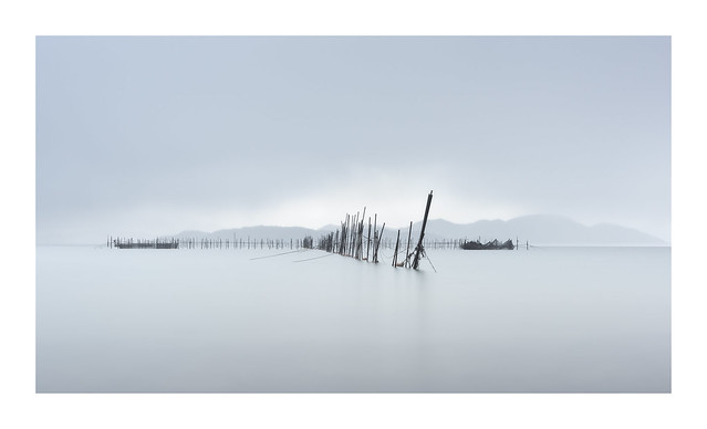 Lake Biwa Nets II