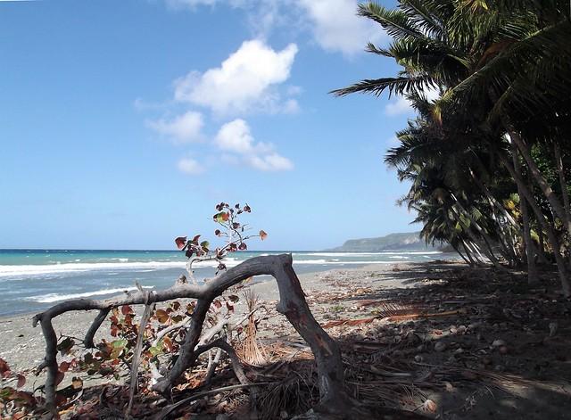 Playa Barigua, Fujifilm FinePix JX300