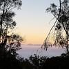 Fog. Black Mtn Tower from #MtAinslie #Canberra #cbr #visitcanberra